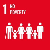 UN goal 1 - no poverty
