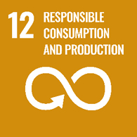 UN goal 12 - responsible consumption and production