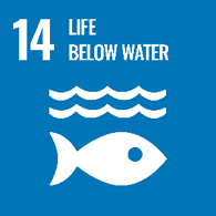 UN goals - 14 - life below water