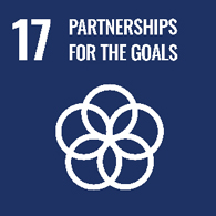 UN goal 17 - partnerships for the goals