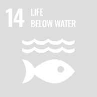 UN Goal 14 - Life below water